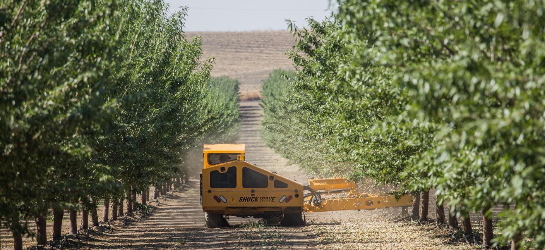 Tree Shaker - Shockwave Sprint - Orchard Machinery Corporation on
