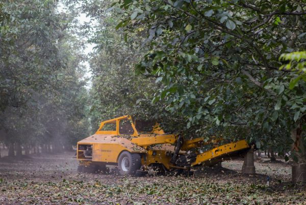 Orchard Machinery Corporation - Tree Nut and Fruit